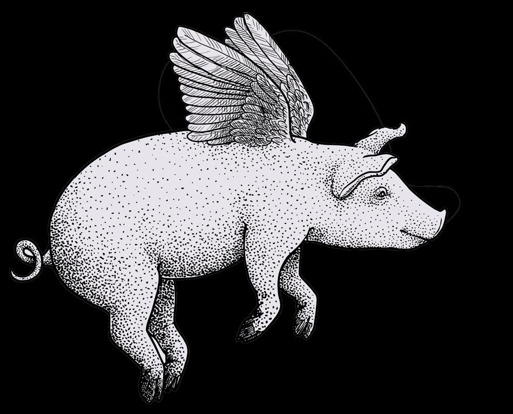 maiale volante